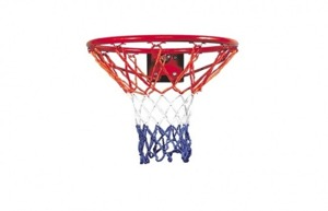 Sure Shot 215 Hobby Basketball Korb Flex