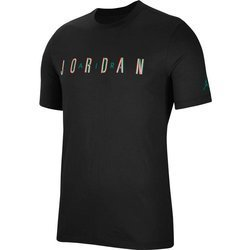 Air Jordan Sport DNA Men's Short-Sleeve Crew T-shirt - CN3330-011